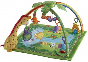 Baby Play Gym by Fisher Price